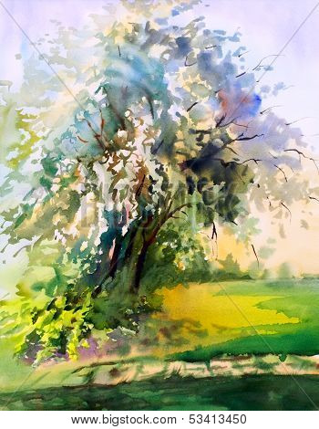 Watercolor painting of the blooming spring tree