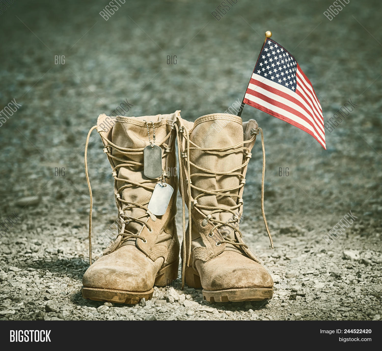 Sates,USA,United,american,army,blue,boots,brown,combat,day,desert,dog,dusty,fallen,flag,freedom,gear,gravel,gray,green,honor,identification,independence,liberty,memorial,military,month,old,outdoors,pair,patriot,patriotic,patriotism,red,rocky,sacrifice,shoes,soldier,stars,stripes,symbol,tag,tan,uniform,veteran,vintage,war,warrior,white