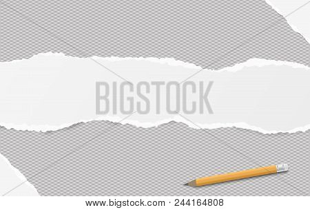 White torn oblong paper strip placed one squared horizontal background, paper for note. Vector illustration. stock photo