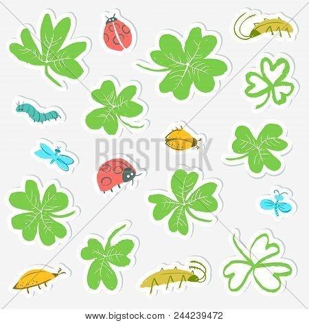 Sticker set with clover leaves and insects. Collection with cute bugs, ladybirds, dragonfly, caterpillar. Vector illustration in doodle style stock photo