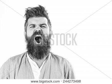 good morning. Man with yawning sleepy face on white background. Hipster with beard and mustache with messy hair wears bathrobe, close up. Morning yawning concept. Guy awake with mouth opened in yawn, copy space. stock photo