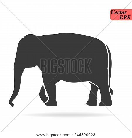 Elephant large cartoon mammal isolated on white. African bush or forest elephant and Asian elephant. Has large ears, concave back, wrinkled skin, sloping abdomen. Sticker for children. Vector eps 10 stock photo