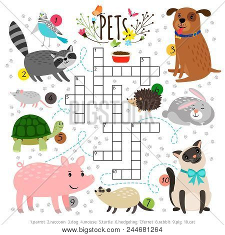 Kids crosswords with pets. Children crossing word search puzzle with pats animals like cat and dog, turtle and hare vector illustration stock photo