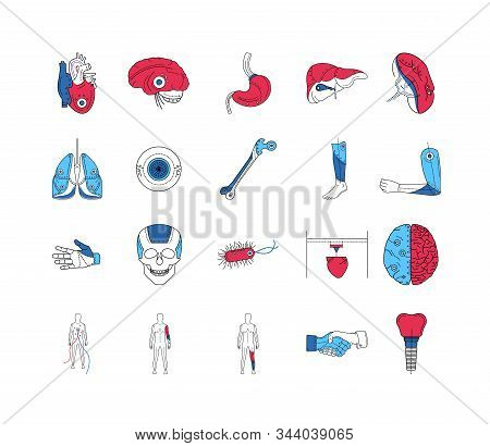 Artificial limb color line icons set. Prosthetic implants of different organs and parts of body. Pictogram for web page, mobile app, promo. UI UX GUI design element. Editable stroke. stock photo