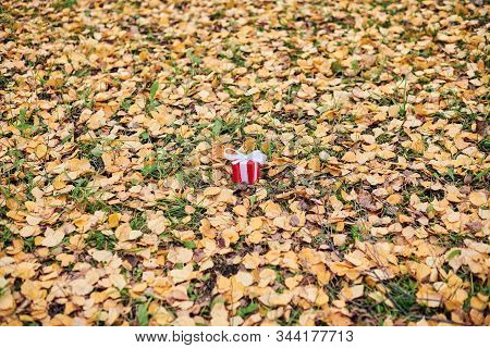 Gift box in autumn fallen leaves on ground in park, copy space. Present for a special occasion: anniversary, birthday, wedding, honeymoon, Christmas or Valentines day. stock photo