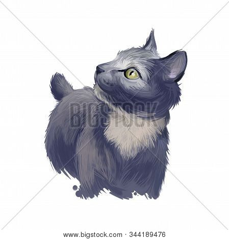 Japanese bobtail kitten with short hair isolated on purple background. Digital art illustration of hand drawn kitty for web. Face of domestic animal with colorful eyes, adorable little cattery stock photo