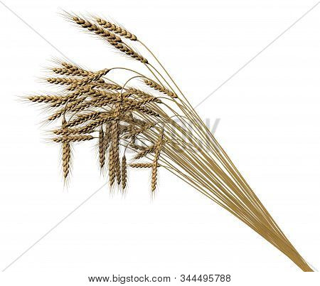 industrial 3D illustration of the modern bunch of wheat spikelets isolated on white background - agriculture stock photo
