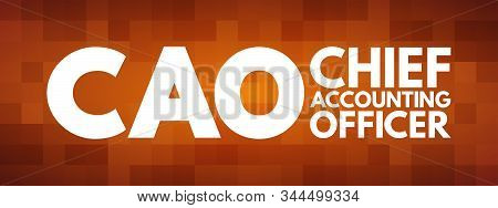 CAO - Chief Accounting Officer acronym, business concept background stock photo