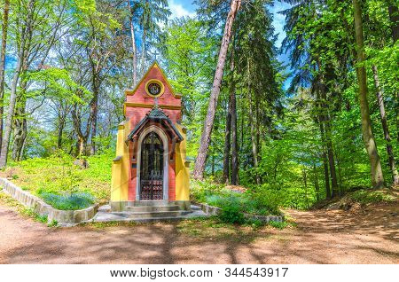 Ecce Homo chapel in Slavkov forest, beech trees with green leaves on branches in  thick dense foliage wood near Karlovy Vary (Carlsbad) town, West Bohemia, Czech Republic stock photo