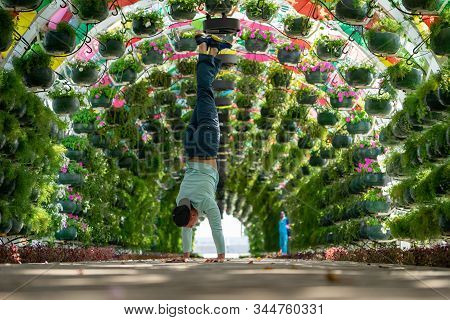 Man keep balance on hands in the colourful floral and umbrella arch at the Corniche Station. Doha, Qatar. Concept of health and force stock photo
