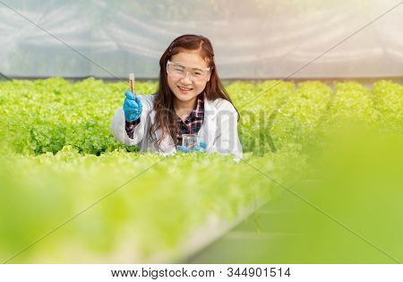 Asian woman scientists holding a research tube To check the quality of water in hydroponic farm system in greenhouse. Concept of Organic foods controlling the environment, lighting, temperature, water stock photo