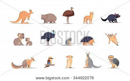 set cartoon endangered wild australian animals collection wildlife species fauna concept flat horizontal vector illustration stock photo