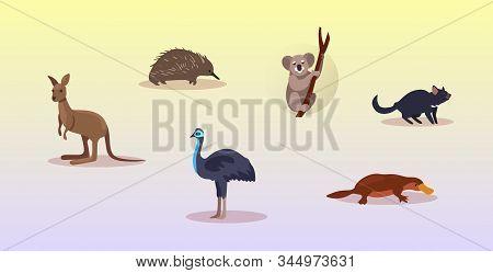 set cartoon endangered wild australian animals tasmanian devil echidna ostrich platypus koala kangaroo symbols collection wildlife species fauna concept flat horizontal vector illustration stock photo