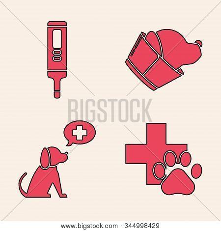 Set Veterinary clinic symbol, Medical digital thermometer, Veterinary clinic symbol and Veterinary clinic symbol icon. Vector stock photo