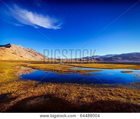 Vintage retro effect filtered hipster style travel image of tso moriri lake in himalayas, ladakh, in