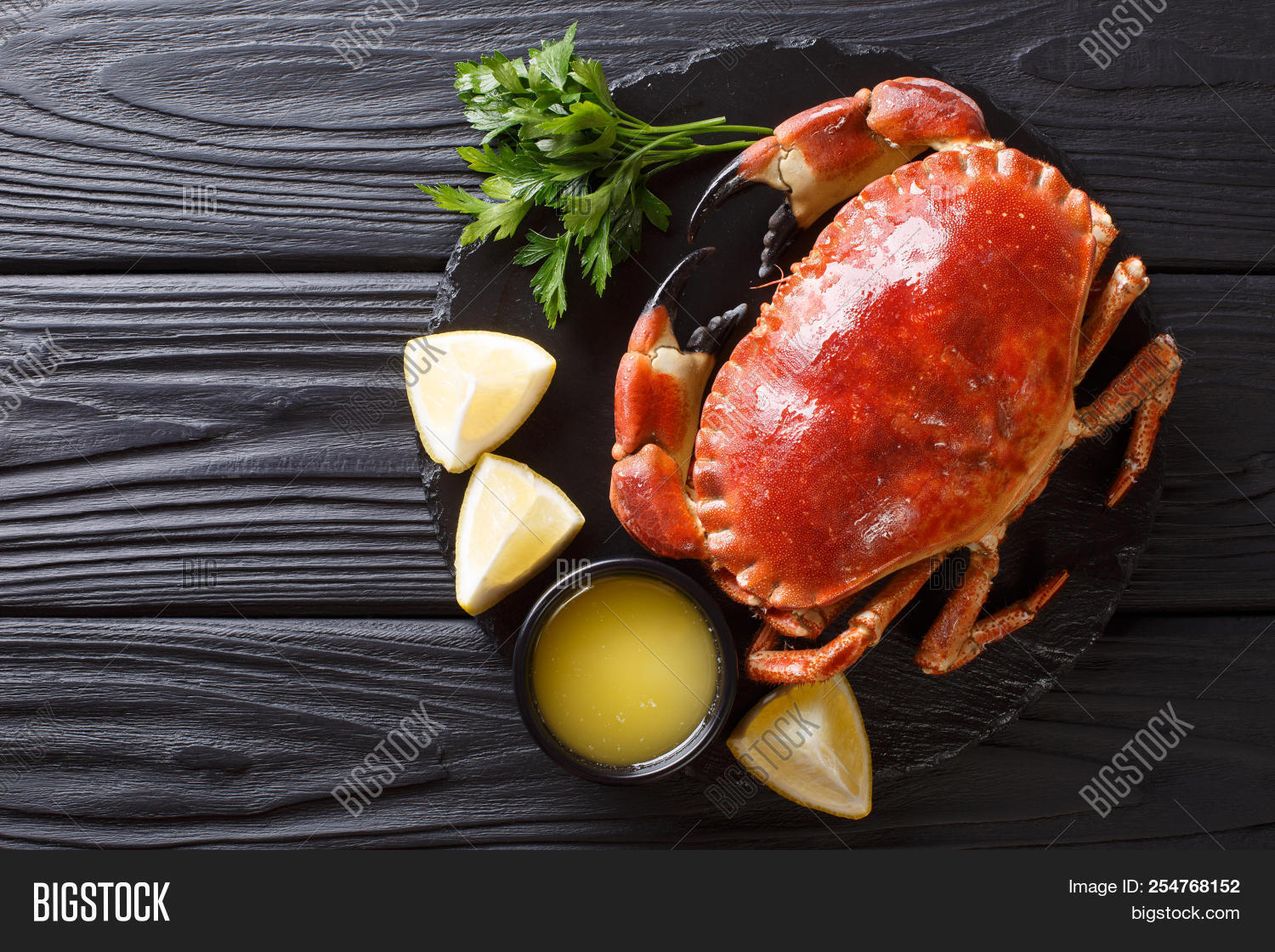 above,background,black,board,brown,cancer,carapace,chili,claws,closeup,country,crab,crustacean,delicious,dinner,dish,edible,exoskeleton,food,fresh,gourmet,green,healthy,herb,horizontal,ingredient,lemon,meal,menu,organic,pagurus,parsley,pepper,prepared,raw,restaurant,rustic,salt,sea,seafood,served,shellfish,slate,table,tasty,top,view,whole,wild,wooden