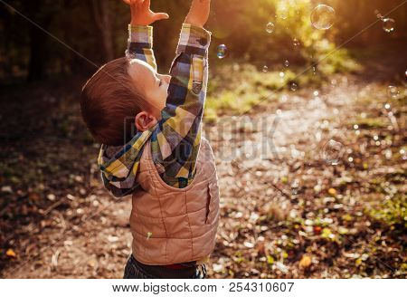 Little boy catching bubbles in autumn forest stock photo