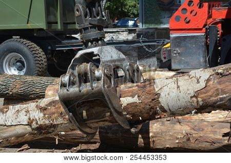 Truck crane hold wood. Wood chipper shredder. A harvester is a type of heavy forestry vehicle employed in cut-to-length logging operations for felling, delimbing and bucking trees stock photo