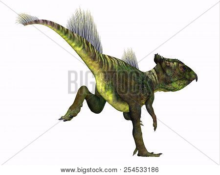 Archaeoceratops Dinosaur Tail 3D illustration - Archaeoceratops was a Ceratopsian herbivorous dinosaur that lived in China in the Cretaceous Period. stock photo