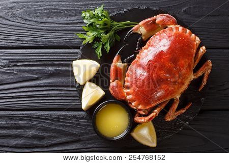 Fresh wild brown crab with ingredients close-up on the table. horizontal top view from above. country style stock photo