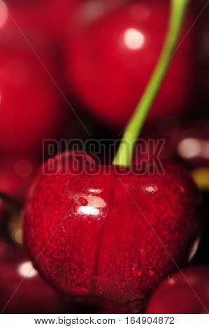 Red Cherries-Dishwasher Magnet Skin (size 24x24)