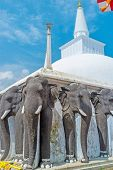 The Elephants At Great Stupa