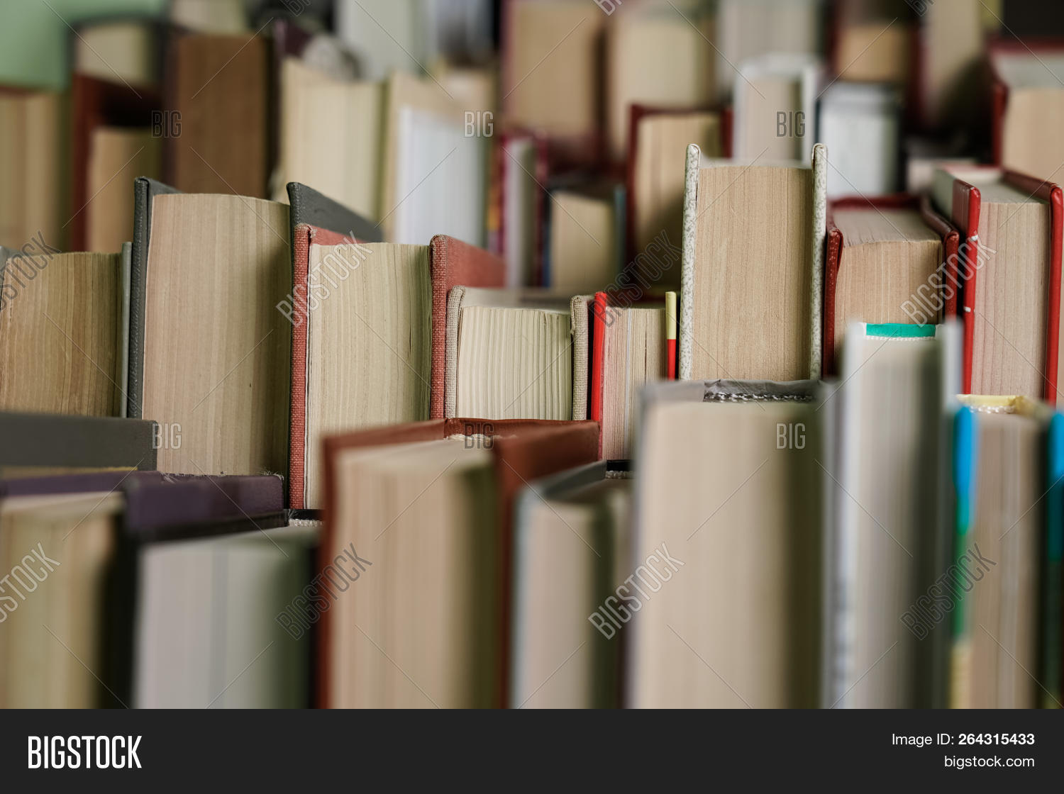 abstract,aged,back,background,books,bookstore,campus,college,culture,data,dictionary,education,educational,electronic,examinations,gray,group,growth,hand,hardcover,heap,heavy,heritage,information,knowledge,law,learn,leisure,library,literacy,literature,many,nobody,old,page,paper,pile,publisher,read,school,science,stack,study,text,textbook,texture,university,vintage,wisdom