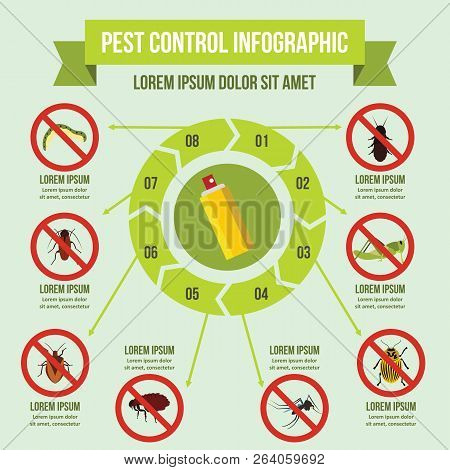 Pest control infographic banner concept. Flat illustration of pest control infographic poster concept for web stock photo