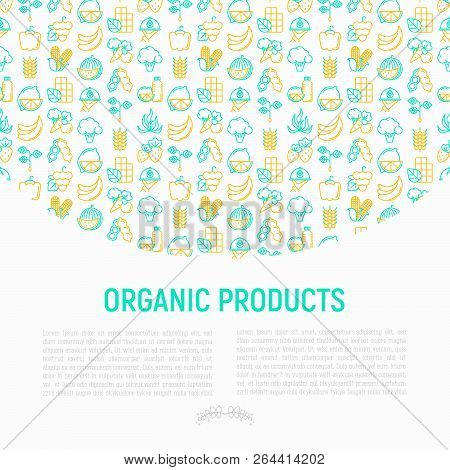Organic products concept with thin line icons set: corn, peas, raw cafe, broccoli, grapes, sprouts, seaweed, watermelon, bananas, fresh juice. strawberry. Modern vector illustration for vegetable shop stock photo
