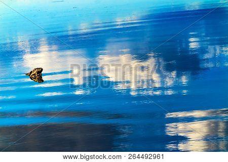 Great Blue White Reflection Water Abstract Lake Sammamish State Park Issaquah Washington stock photo