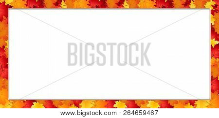 Vector rectangle border frame with fallen autumn leafage on white background with empty copy space. Abstract autumnal banner template with maple leaves. Fall season greeting card, poster, flyer. stock photo