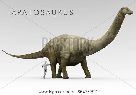 An illustration of the Dinosaur Apatosaurus (formerly known as Brontosaurus) depicted alongside an average height human. Apatosaurus is an extinct genus of sauropod dinosaur that lived in North America during the Late Jurassic period. stock photo