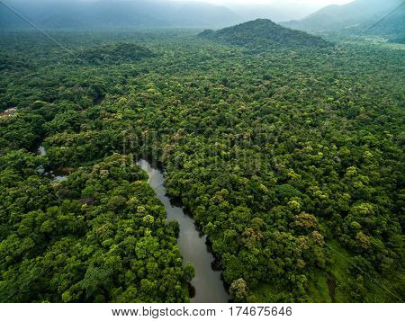 Aerial View of River in Rainforest, Latin America stock photo