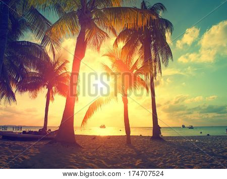Sunset Beach with palm trees and beautiful sky. Tourism, travel, vacation concept background. Mexico