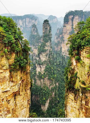 Amazing natural quartz sandstone pillar named the Avatar Hallelujah Mountain and other wooded rocks in the Tianzi Mountains the Zhangjiajie National Forest Park Hunan Province China. stock photo