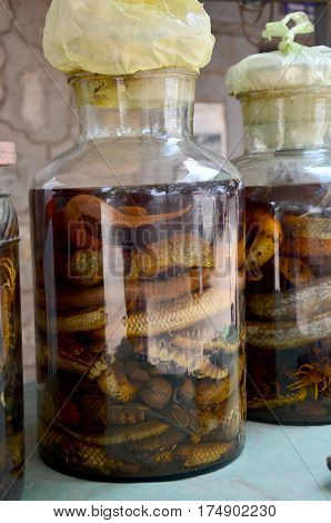 Laotian people made traditional liquor fermented and pickled with poisonous animals and poisonous insect with herbal and other for drink liquor herbal medicine in Luang Prabang Laos stock photo