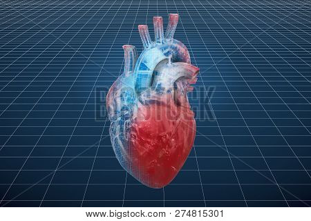 Visualization 3d cad model of human heart, 3D rendering stock photo