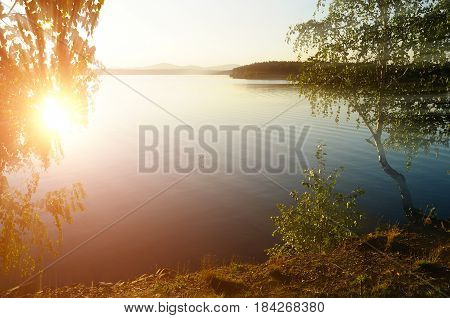 Summer colorful sunset landscape at Irtyash Lake in Southern Urals Russia. Spreading summer birch at the edge of the cliff under bright summer sunbeams.Sunny summer background. Summer water nature in sunny summer evening. Summer landscape