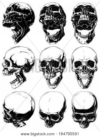 Vector set of 9 realistic cool detailed graphic black and white human skulls in different projections with open mouth