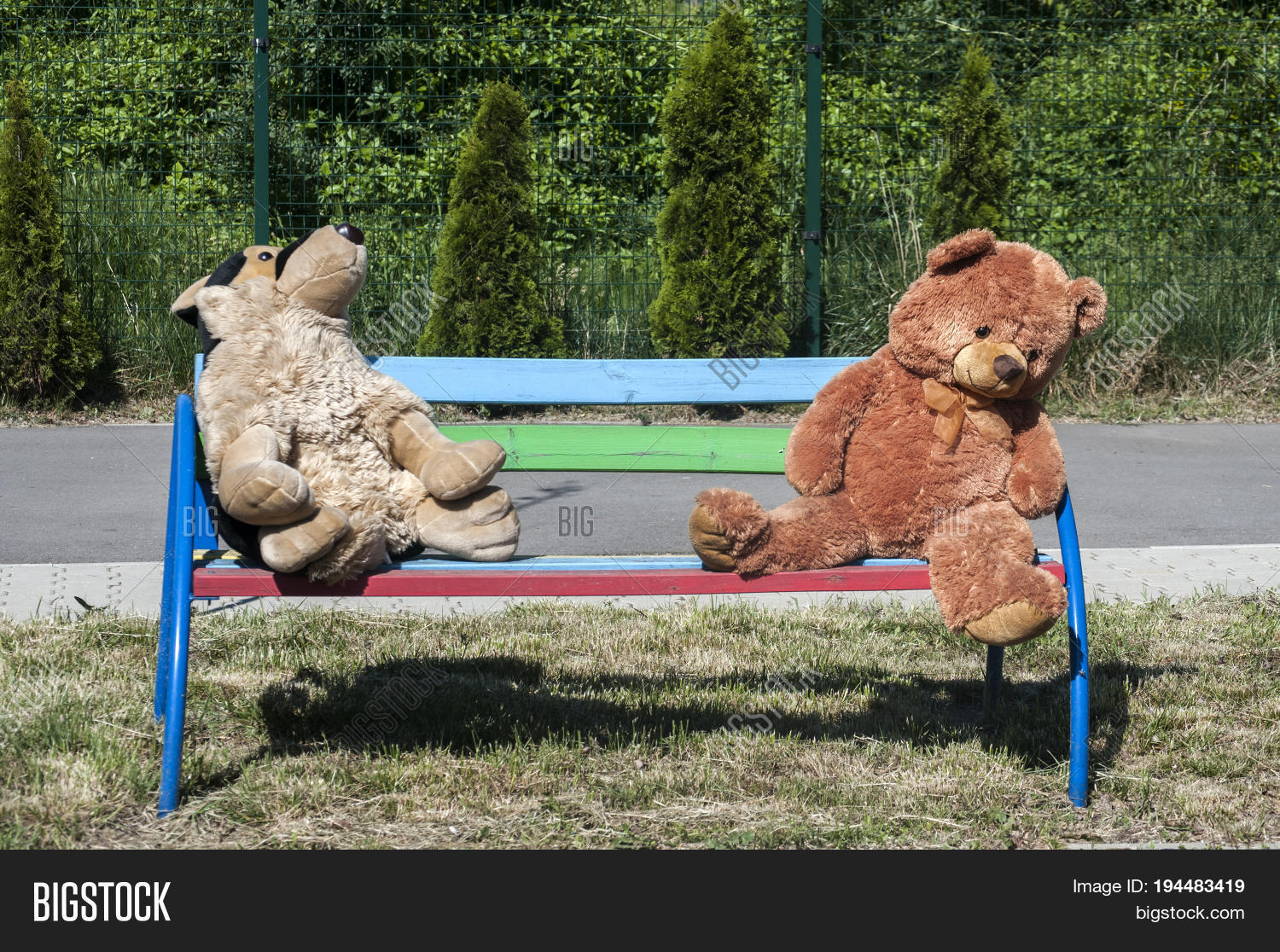 animal,bear,bench,child,childhood,fluffy,garden,kinder,kindergarten,plush,plushy,stuffed,teddy,toy