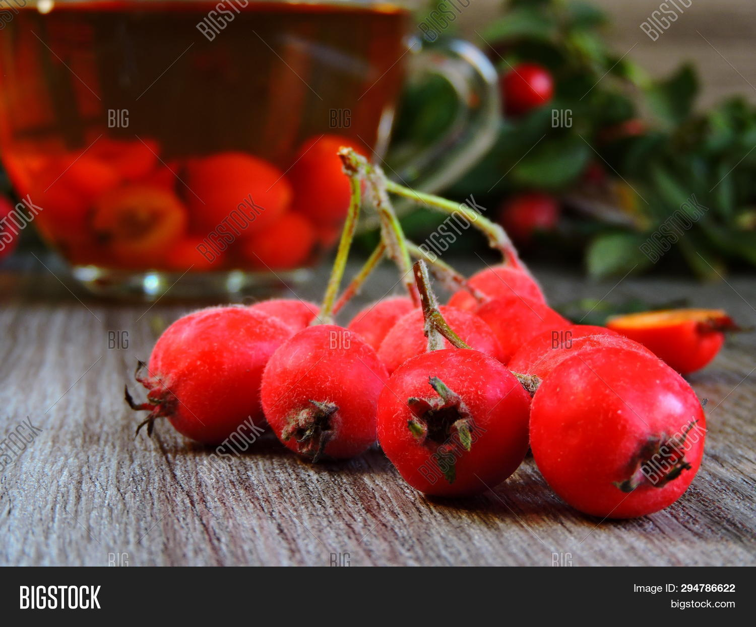 alternative,autumn,berry,branch,briar,china,cosmetics,cup,dog,dogrose,drink,eating,fruit,glass,hawthorn,health,herb,herbal,hips,homeopathy,hot,medicine,nutrition,organic,plant,recipe,ripe,rose,rosehip,tea,therapy,top,traditional,useful,view,vitamin