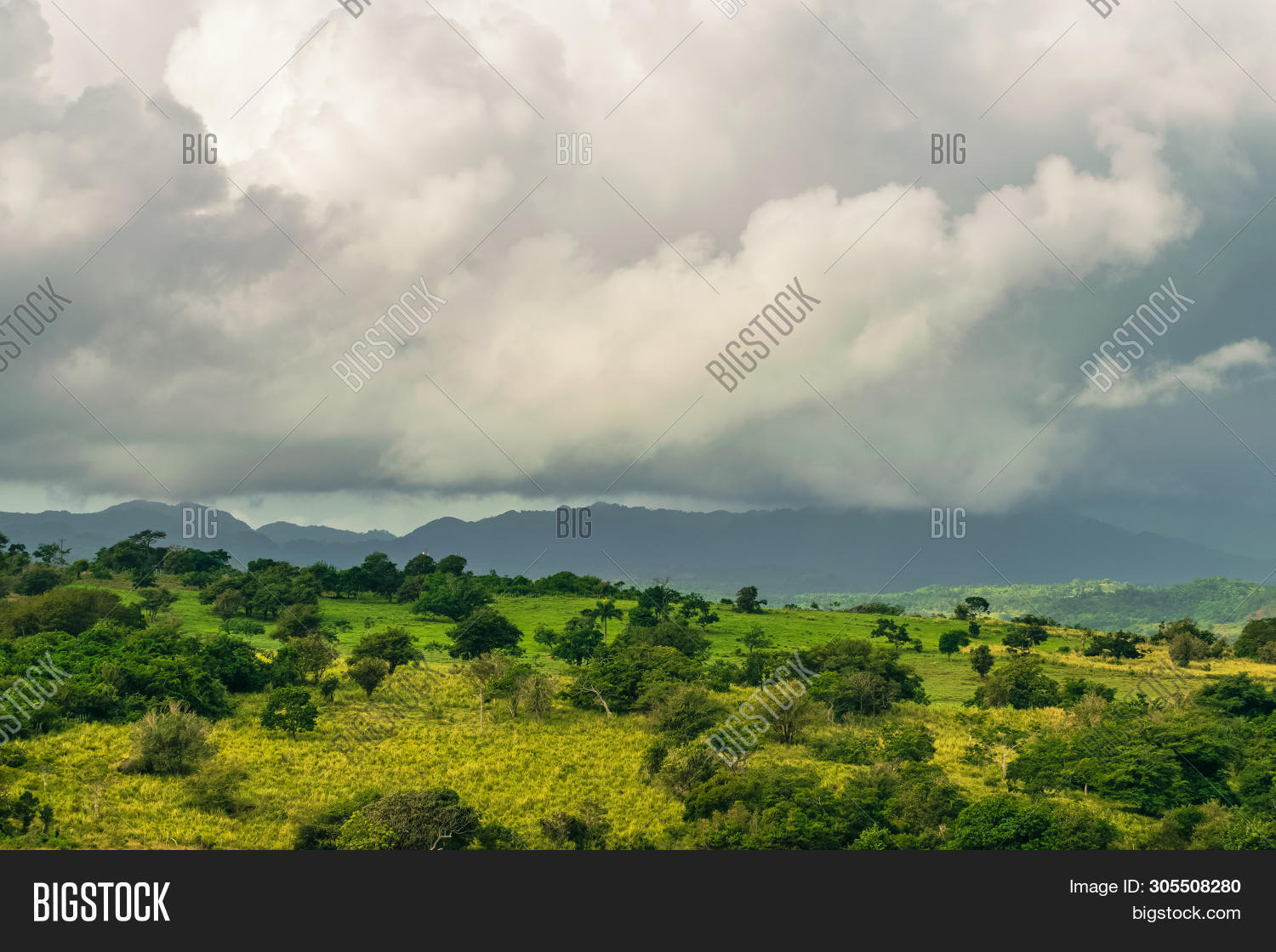 background,bright,climate,clouds,daylight,dominican,dramatic,environment,flora,flow,fog,foliage,forest,green,haze,hill,jungle,landscape,leaf,light,looking,lush,motion,mountain,natural,nature,outdoor,peaceful,rain,rainforest,republic,rural,scenery,sky,storm,stunning,tranquil,tranquility,travel,tree,tropical,tropics,valley,vegetation,vibrant,view,vivid,walk,wild