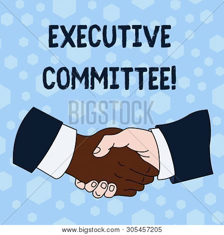 Word writing text Executive Committee. Business concept for Group of Directors appointed Has Authority in Decisions Hand Shake Multiracial Male Business Partners Colleagues Formal Shirt Suit. stock photo
