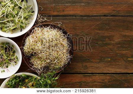 Assortment of micro greens at wooden background, copy space, top view. Kale, alfalfa, sunflower and other sprouts in bowls. Healthy lifestyle, stay young and modern restaurant cuisine concept stock photo