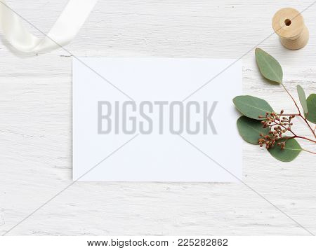 Feminine wedding desktop mock-up with blank paper card and Eucalyptus populus branch on white shabby table background. Empty space. Styled stock photo, web banner, flat lay, top view. stock photo