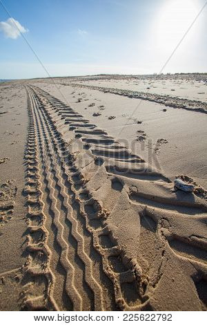 Beach tractor tire track in sand. Perspective and vanishing point. Tread marks left by industrial vehicle leading into the distance. stock photo