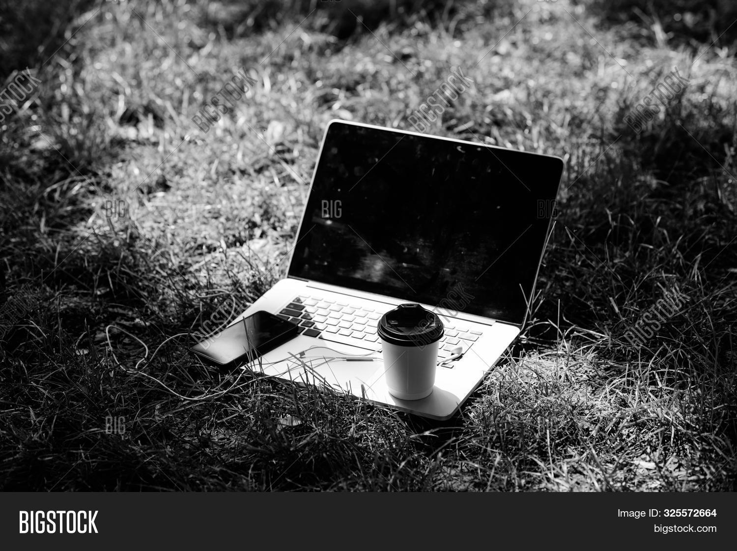 Summer Park. Work And Relax In Natural Environment. Green Office. Its Coffee Time. Coffee Take Away.