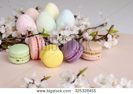Multicolored decorative Easter eggs and sweet macarons or macaroons decorated with blooming apricot flowers on pastel pink background. Copy space. Greeting card concept. Top view stock photo