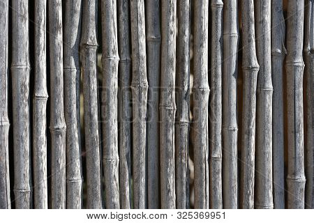 bamboo background Background of dry bamboo pattern, obsolete, foreign, stock photo