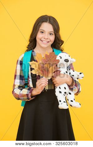 Studying in primary school. School education concept. Back to studying. Little schoolgirl with toy backpack and leaves. Happy childhood. Beginning of academic year. Autumn time for studying. stock photo